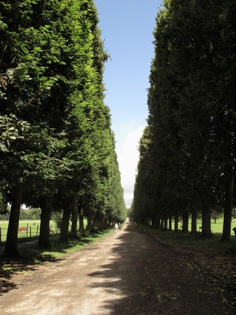 Walk the walk of Marie Antoinette, Versailles