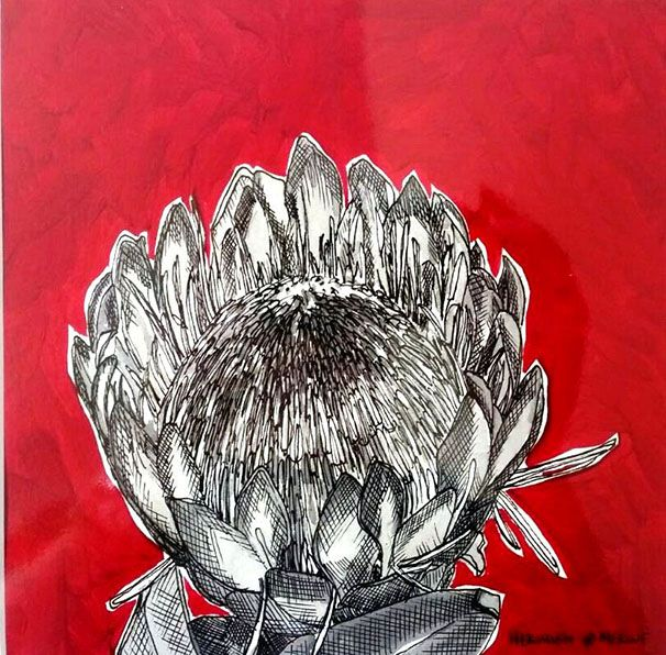 Hermien Van Der Merwe;  Title: Fynbos:  Table Mountain Fynbos 14 Medium: Pen-and-Ink drawing on paper with oil paint background Size: 200 x 200mm