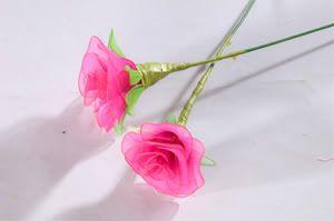 Cách làm hoa voan - Nắng biên thùy