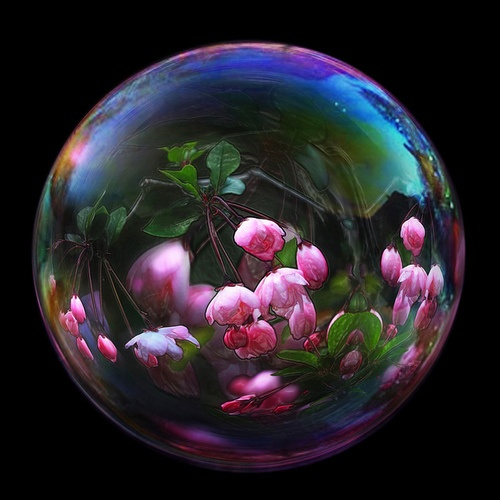 93 Best Glass Paperweights Marbles Ornaments Amp Other