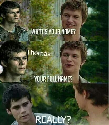 Really? Funny TFIOS and The Maze Runner crossover.