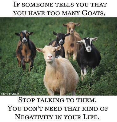 Ha ha ha! Heather ♫ (shared from KW Farms)
