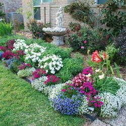 Image result for australian native cottage garden