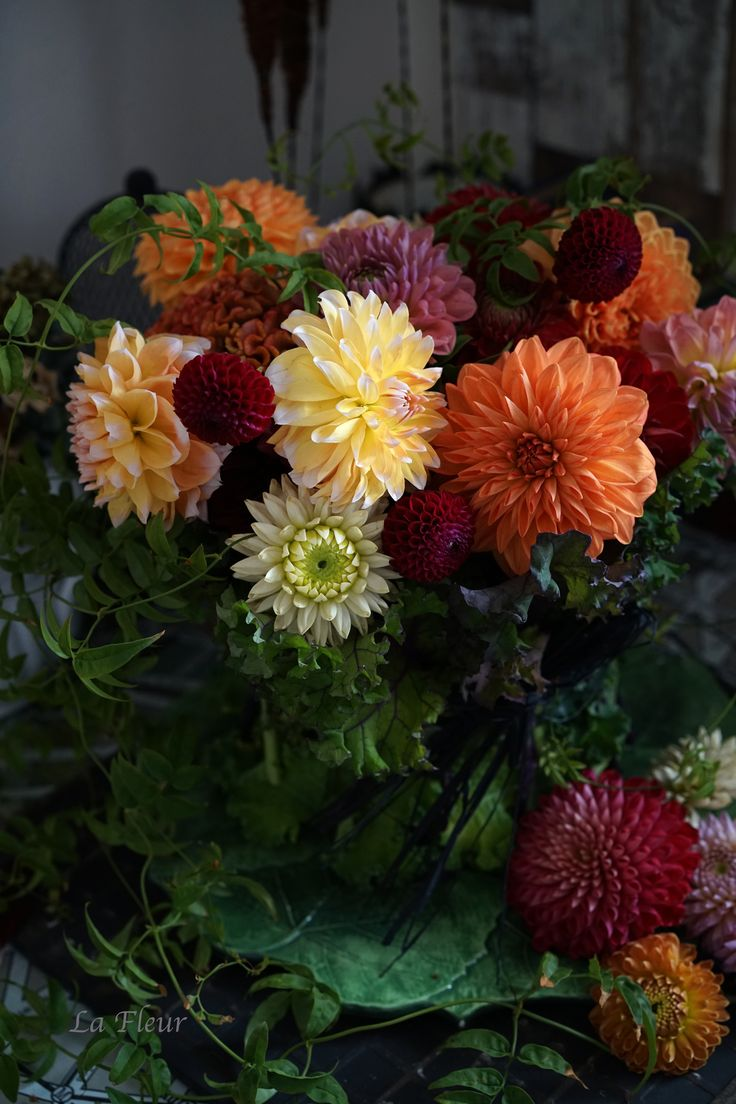 best autumn shades blooms images on pinterest beautiful