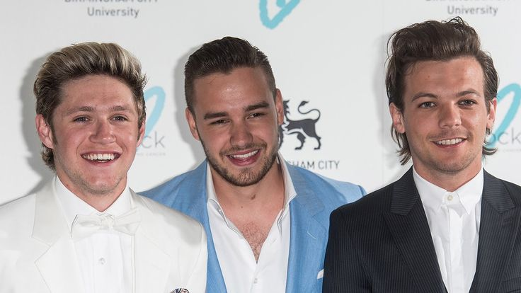 Niall Horan, Louis Tomlinson, Liam Payne Confirm One Direction Break