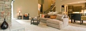 How to Choose Professional & Reliable Carpet Cleaning West Auckland? http://goo.gl/8OMgdm