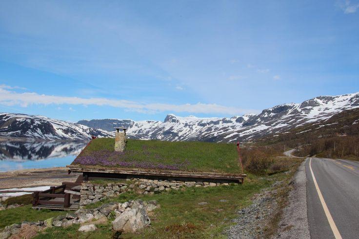 Hallingskarvet National Park - Hol Municipality, Norway