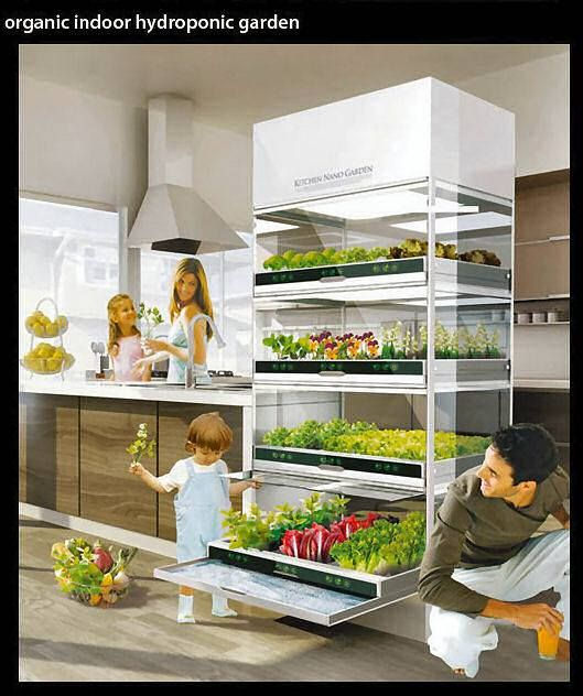 16 best Hydroponic Garden images on Pinterest Hydroponic