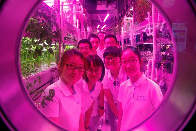 Volunteers smile from inside a simulated space cabin in which they temporarily live as a part of the scientistic Lunar Palace 365 Project, at Beihang University in Beijing, China July 9, 2017. A group of four volunteers entered the Lunar Palace, a space of 160 square meters, China's first bioregenerative life-support base where they will live for next 200 days replacing another group who spent previous 60 days inside the simulated cabin testing how a life-support system works in a moon-like…