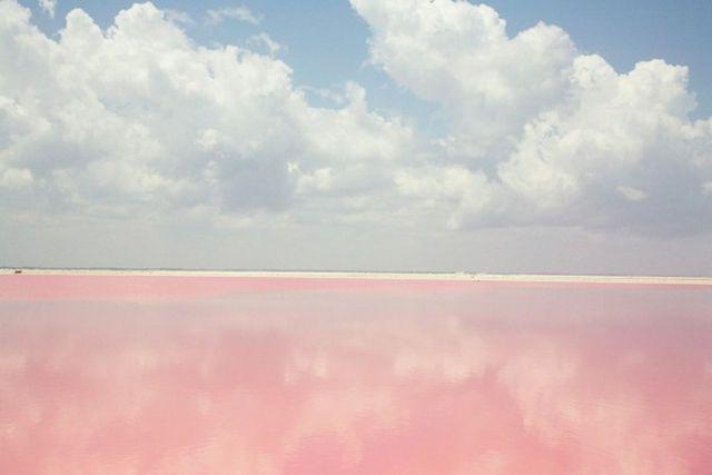 メキシコ・ユカタン半島にある街「バリャドリッド(Valladolid)」の塩田。それで塩がピンクなのか。