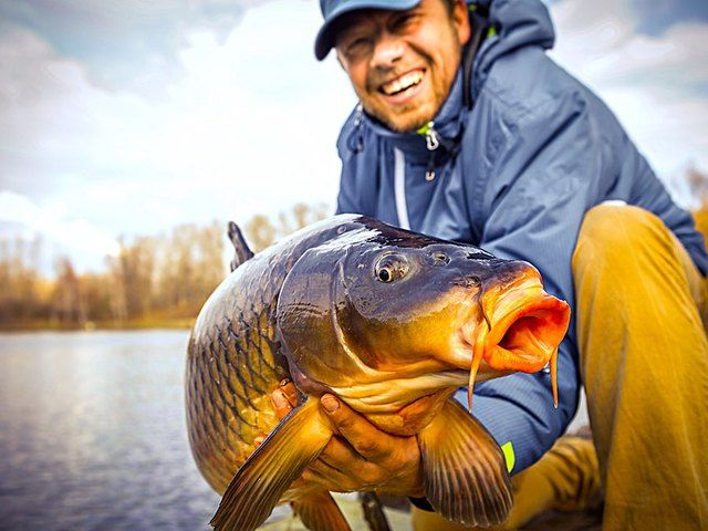 Looking to get outdoors this summer and catch some fish? There's new gear that will help you catch more, faster, all while improving your game. Jared Cotter is reeling the top three high-tech fishing gadgets of 2017.