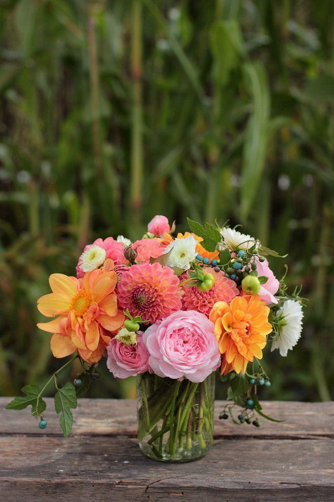Seasonal bouquet with dahlias, cosmos, David Austin roses, porcelainberry/wild grape
