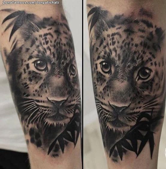 Tatuaje de Tigres, Animales - ZonaTattoos.com