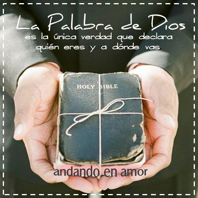 El mejor regalo, una Biblia. El unico libro que cambiará toda tu vida si la crees, en la que se encuentra esperanza, redención,  consolación y vida terna.