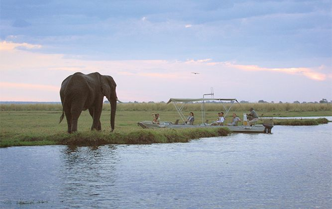 The Botswana Wilderness Budget Safari