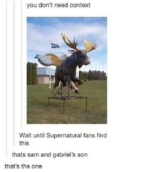 Supernatural anime funny | funny supernatural sam winchester spn fandom moose fandoms sabriel
