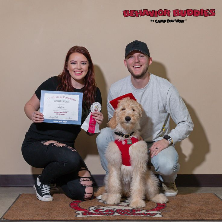 Level 1 graduate Sophie with her humans Teghin and Levi in