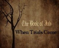 OVERVIEW OF THE BOOK OF JOB ANDTHE BOOK OF JOBOVERVIEW Who was Job? This wealthy landowner and father is one of the best-known biblical heroes. But we know little more than that he was stripped o…
