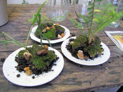 DIY Terrariums in diy  with vase terrarium Plant Glass