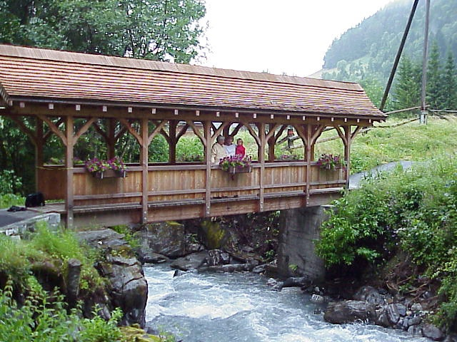 Reminds me of the bridge near our cabin in the mountains many years ago.: Cabin Ideas, Years Ago, Outdoor Fun, Mountain Cabin, Covered Bridges, Nc Mountain