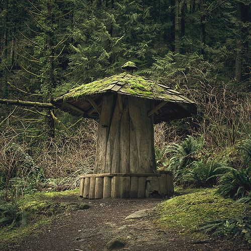 Mushroom Shelter From An Old Tree Trunk Made Backyard