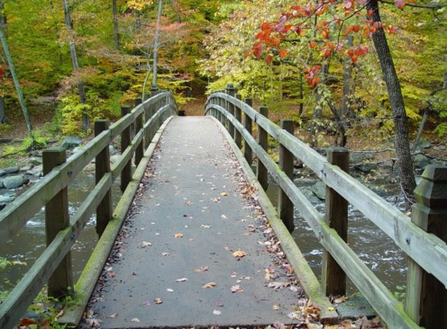 Rock Creek Park – Washington, DC - A Visitors Guide to Rock Creek Park
