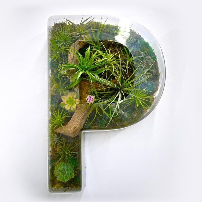 Die besten 25 fototapete orchidee ideen auf pinterest - Wandfarbe orchidee ...