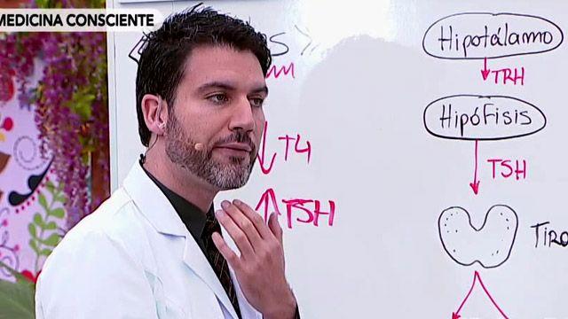 Hoy el doctor Ricardo Soto nos habló sobre una de las enfermedades más comunes entre las mujeres: el hipotiroidismo. ¿Qué es? ¿En qué nos afecta? ¿Por qué nos cuesta bajar tanto de peso si la padecemos? Y ¿Cómo podemos tratarla? ¡Aquí te contamos!