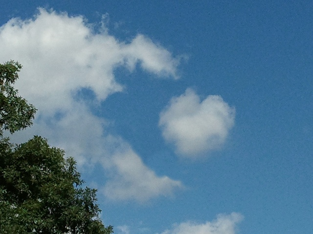 This cute little heart-shaped cloud appeared in the sky today. It is not photoshopped to look like this; Mother Nature made it that way! :)  ©2011 Tiffany Reed #cloud #heart #sky