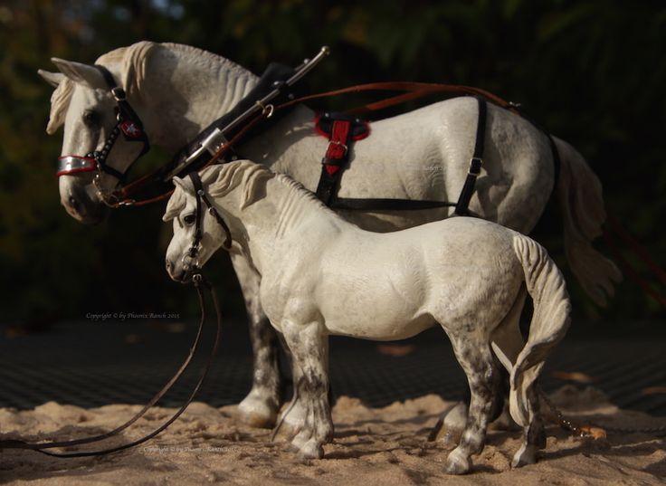 CM CollectA Dartmoor Pony   Model Horse Photography ...