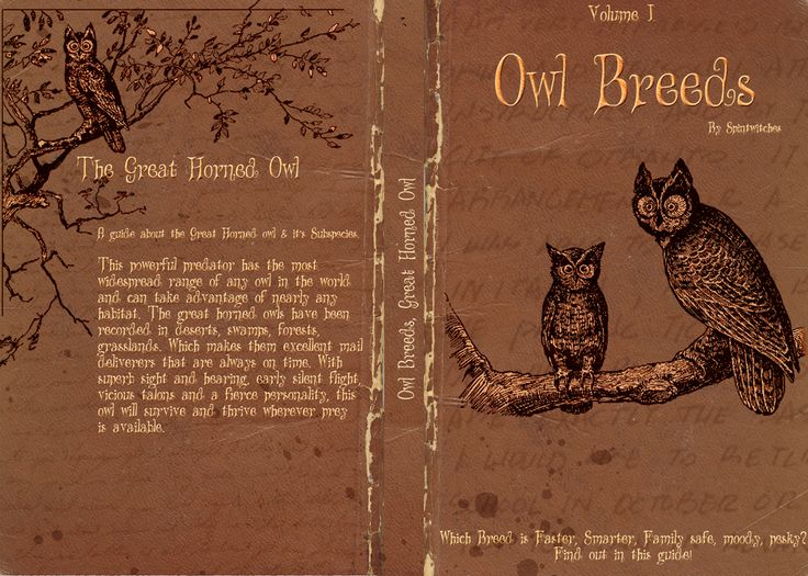 Owl Breeds Volume One FULL cover by ~Lost-in-Hogwarts on deviantART
