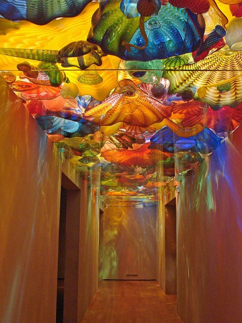 Dale Chihuly glass at Oklahoma City Museum of Art Oh I'd love to go here and see this. He did the art in the Disney Magic & Wonder atriums!