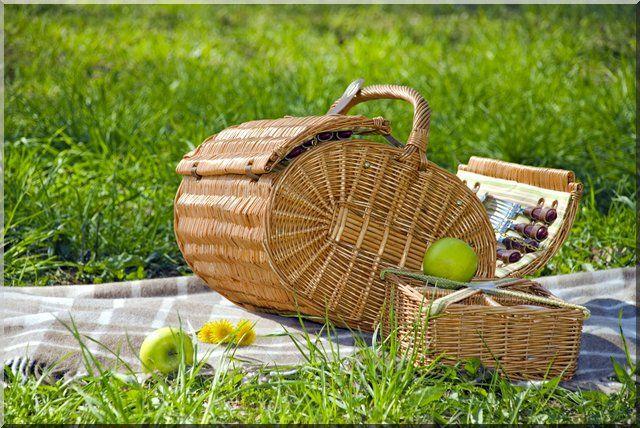picnic ideas