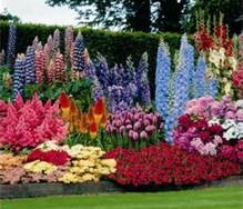 Flower Garden Ideas In Michigan 24 best front yard landscape images on pinterest | garden ideas