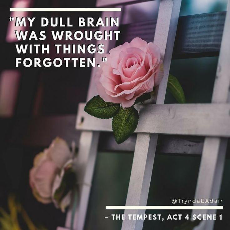 """My dull brain was wrought with things forgotten.""  #Macbeth Act 1 scene 3. #ShakespeareSunday photo by #AlexBlăjan.  #WilliamShakespeareQuote #WilliamShakespeare - https://www.instagram.com/p/BcPiZIYh4Ar/"