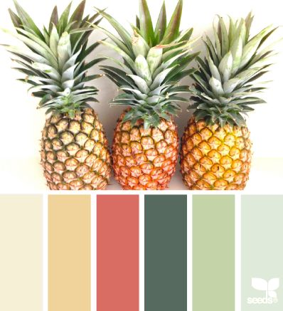 pineapple hues: love this color palette but it sure where or when I will use it. Future basement finishing?
