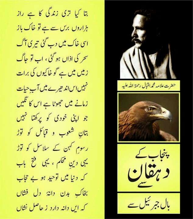 Iqbal Urdu Shayari Images: 44 Best Iqbal Poetry Images On Pinterest