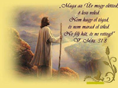 """dandej Blogja - BAGAMÉR , Biblia Iskola, CSENDES PERCEK, dr.Reisinger János, Erőss Zsolt, Igefórum, Igehirdetések >Zenék,""""Isten muhelyében"""",* Napi Ige *,1001 Online Radio,6 érv Isten létezésére,:) Biblia.hit.hu :),A Csodálatos Földbolygó,A gyámolítás ajándéka,A világ legfurcsább növényei,Ágnes :) fotói,Áhitatok minden napra,Alfa-Omega Keresztyén Közösség,Árvai Emil,Avilai Szent Teréz imaszoba,Az újraélesztés ABC-je,B I B L I A :),Bálint gazda honlapja,Barátok Kincsei,Befogadó Ház,Béka…"""