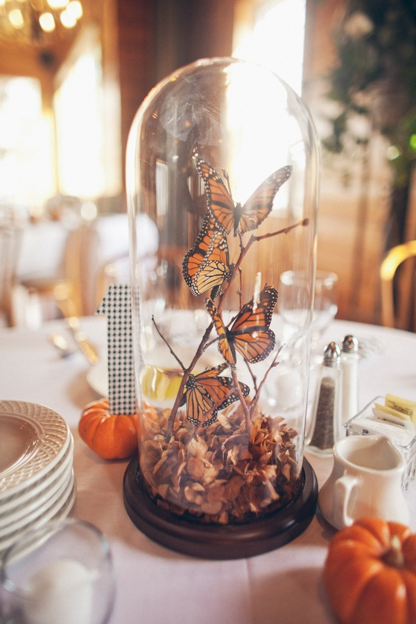 nice alternative to flowers at the table. oh we could also do an ecosystem....consider large flower on the top with fish in the middle and rock and marsh at the bottom