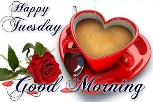 Happy Tuesday, Good Morning tuesday tuesday quotes happy tuesday tuesday pictures tuesday images good morning tuesday