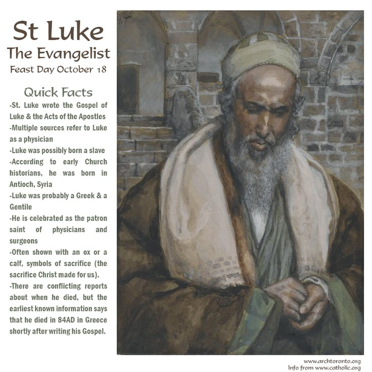 quiz gospel of luke and st Shmoop bible guide: gospel of luke trivia interesting gospel of luke trivia  written by phd and masters students from stanford, harvard, and berkeley.