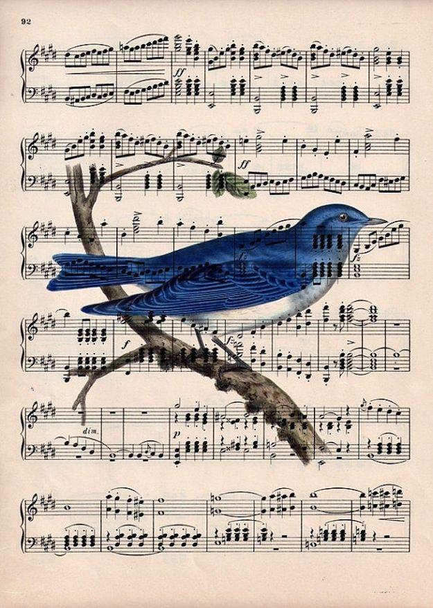 Открытка с нотами и птичками