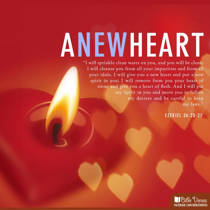 Bible Quotes Heart: 7 Best Bible Verses Images On Pinterest