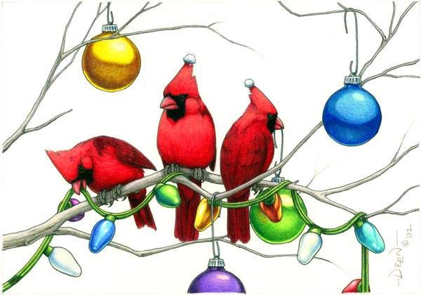 Christmas cardinals sporting there own winter hats
