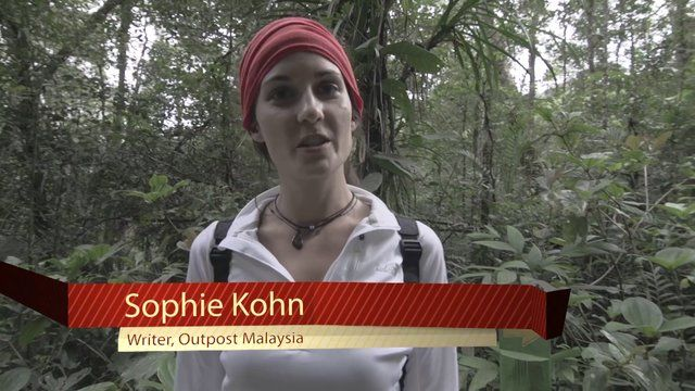 Team Outpost #Malaysia explores Mount #Kinabalu, while #hiking in Kinabalu Park, and gets a tour of some beautiful flora and fauna: http://www.opxpeditions.com/malaysia/post/mount-kinabalu-kinabalu-park-malaysia/