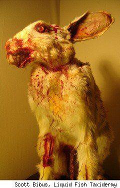 Zombie Rabbit - Scott Bibus  http://deadanimalart.com