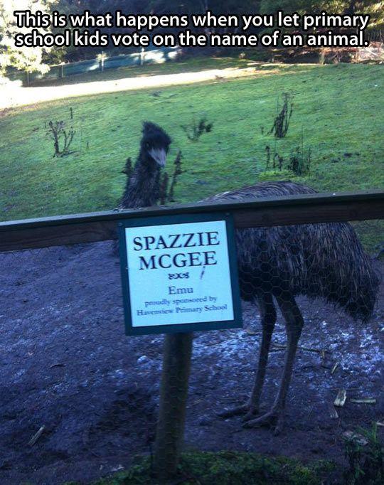 Classic Aussie humour