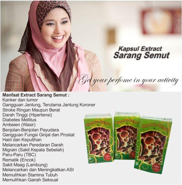 Kapsul Sarang Semut Extract http://dedeherbals.blogspot.com/2014/08/kapsul-sarang-semut-extract.html