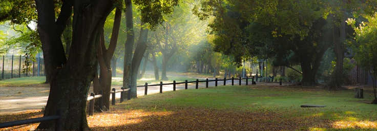Early morning at #Maccauvlei on Vaal. http://www.maccauvleionvaal.co.za/