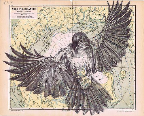 Marc Powell : bic biro drawing on antique map.